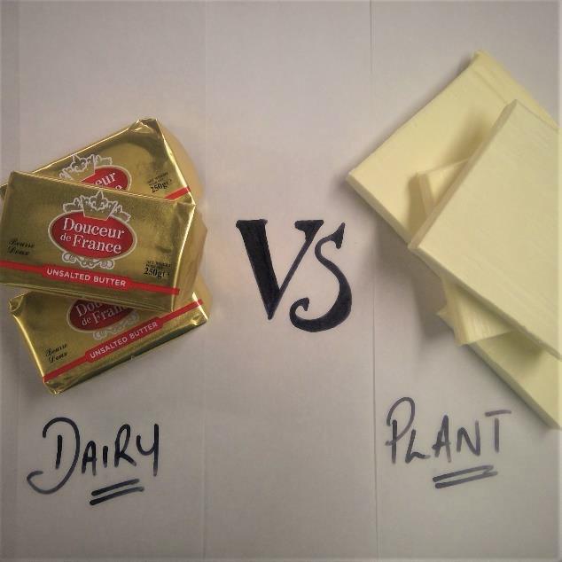 Dairy Vs Plant